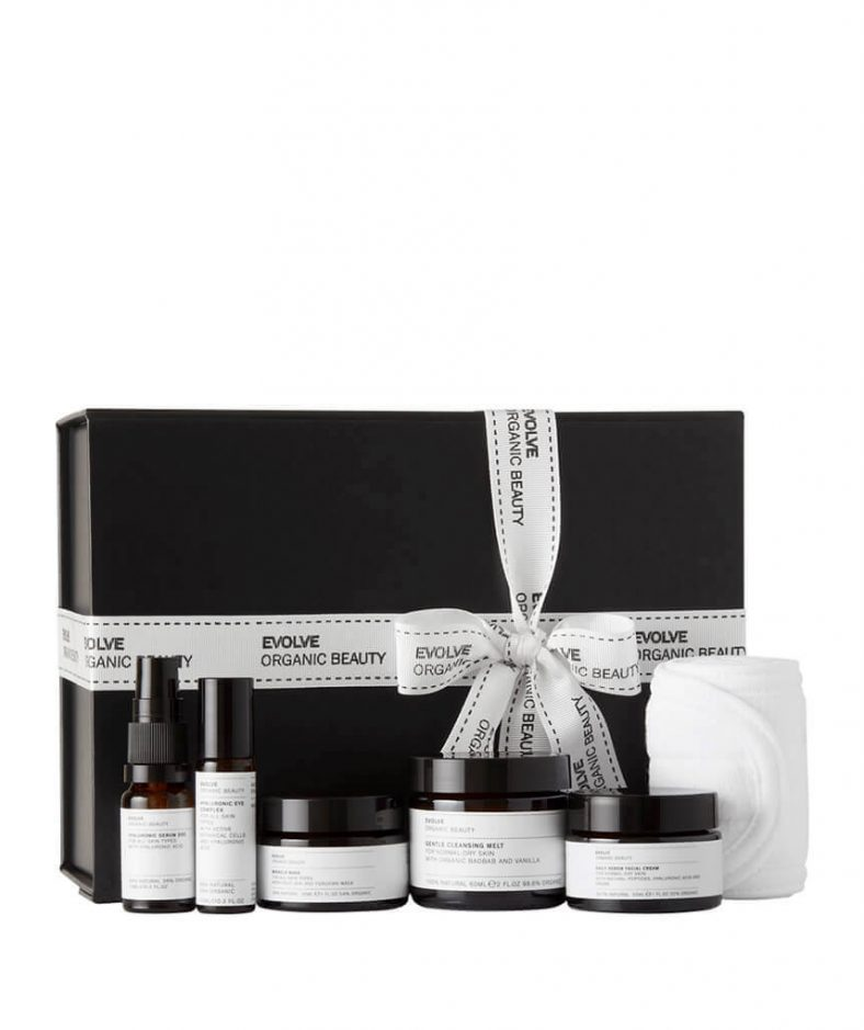 Evolve Organic Beauty Kit Facial in a Box